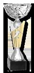 https://www.tournoi-international-guerledan.com/wp-content/uploads/2019/06/coupe2019.png
